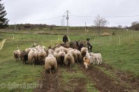 la grange à ludo-25