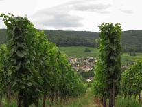 Jolis villages cachés dans le vignoble... c'est beau l'Alsace !