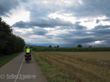Voyages Alsace Storcki-23