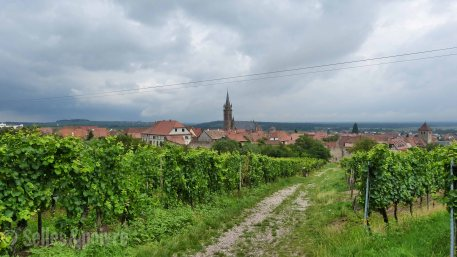 C'est beau l'Alsace
