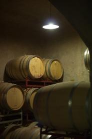 Vin Argentine_17