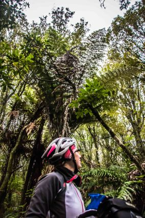 Te Ara Ahi, Thermal by bike